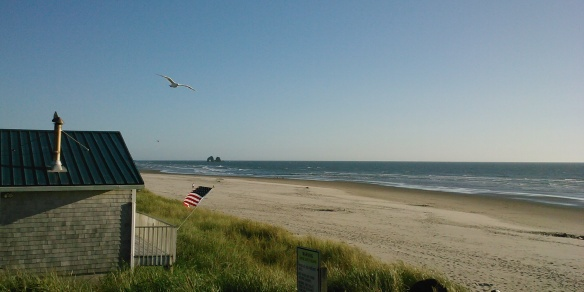 That most patriotic of birds, a seagull, drifts above an American flag, bent in the wind, signaling that all is well…whatever day it is.