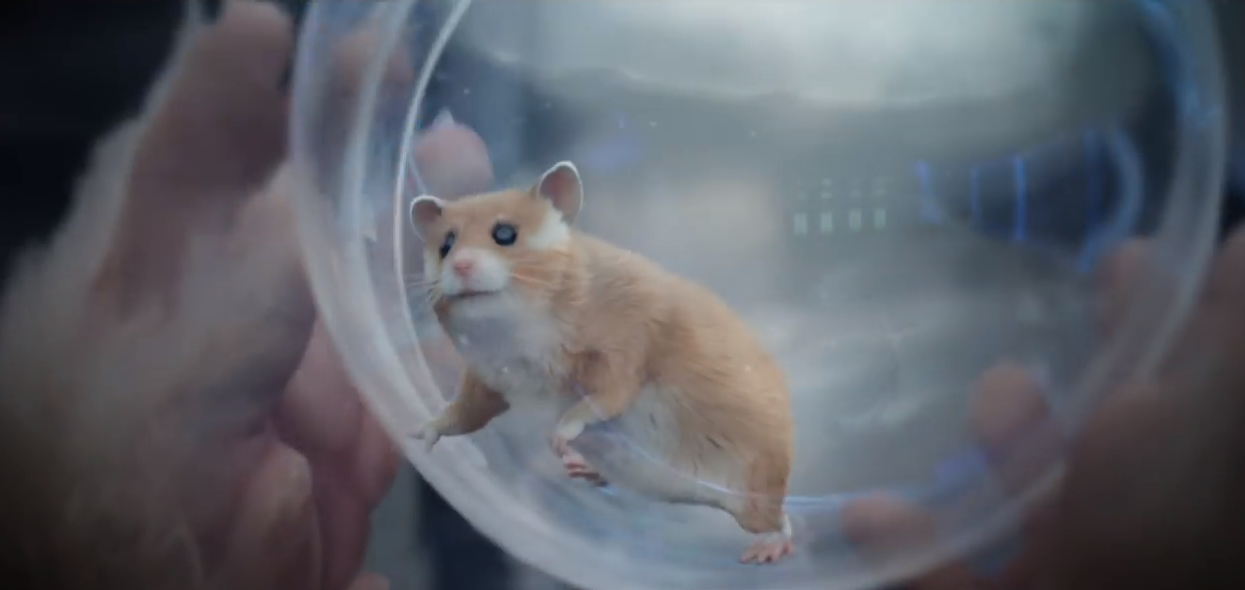 This the Xxx hamster porn tube tight