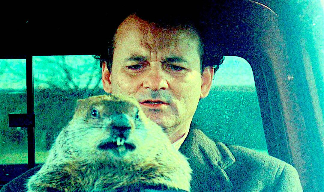 groundhog drive