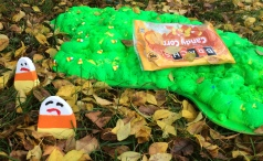 A daytime view of the goo...with the bag and candy corn stuck in the toxic spill.